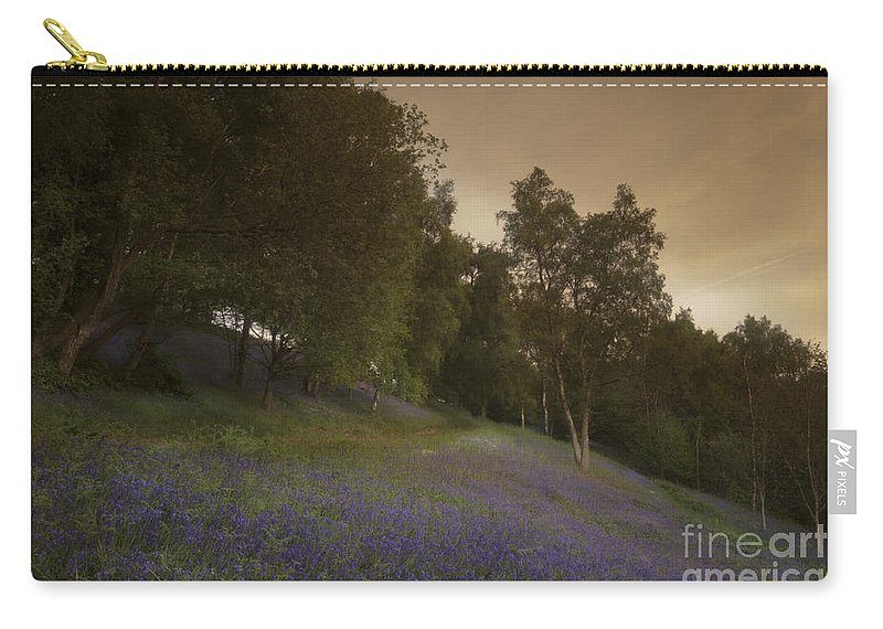 Bluebell Carry-all Pouch featuring the photograph Bluebells by Angel Ciesniarska