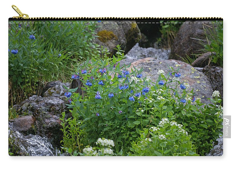 Wildflowers Carry-all Pouch featuring the photograph Bluebells by Heather Coen