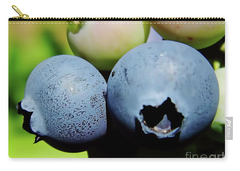 Blue Berries Carry-all Pouch featuring the photograph Blueberries by D Hackett