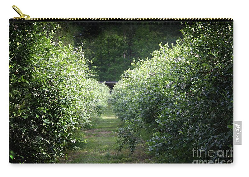Blueberries Carry-all Pouch featuring the photograph Blueberry Bushes by Kim Henderson