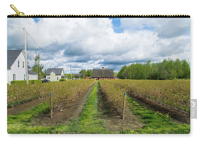 Blueberry Carry-all Pouch featuring the photograph Blueberry Rows by Tom Cochran