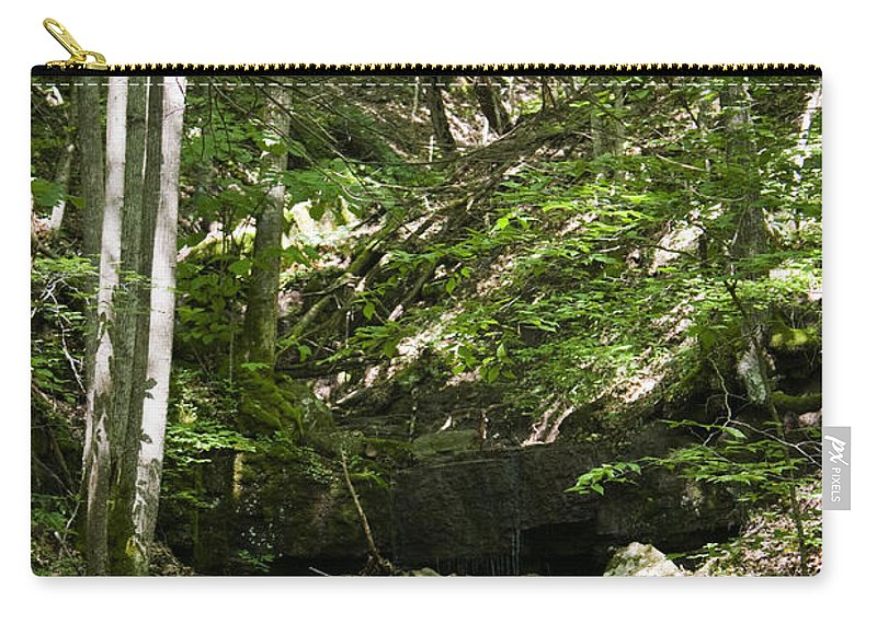 Bluestone Carry-all Pouch featuring the photograph Bluestone State Park Mountain Stream West Virginia by Teresa Mucha