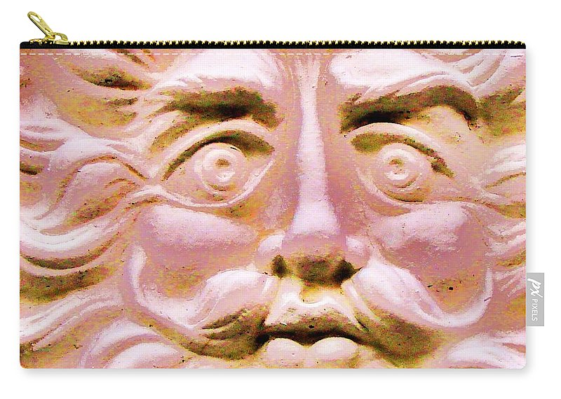 Contemporary Carry-all Pouch featuring the photograph Blushing Sol by Margaret Bobb