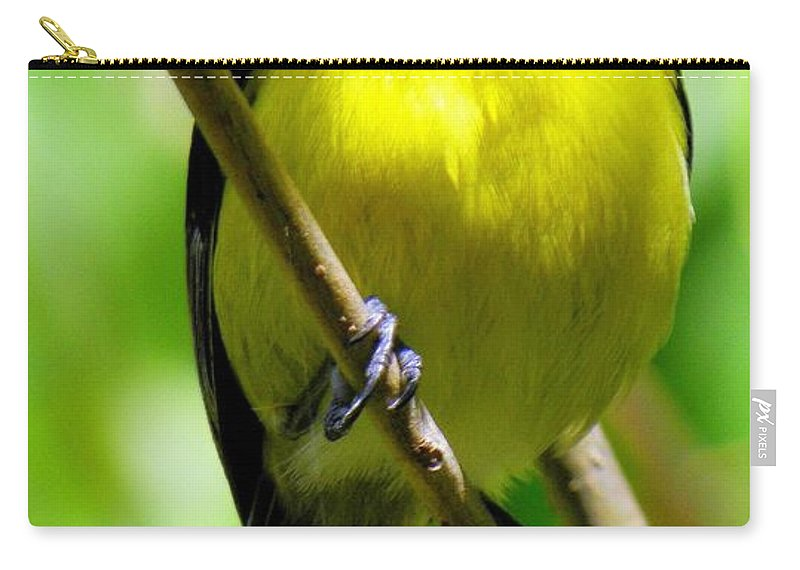 Yellow Birds Carry-all Pouch featuring the photograph Boastful Bird by Karen Wiles