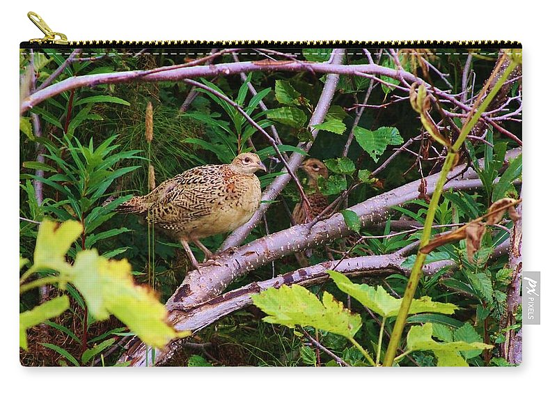 Quail Carry-all Pouch featuring the photograph Bob White by Lori Mahaffey