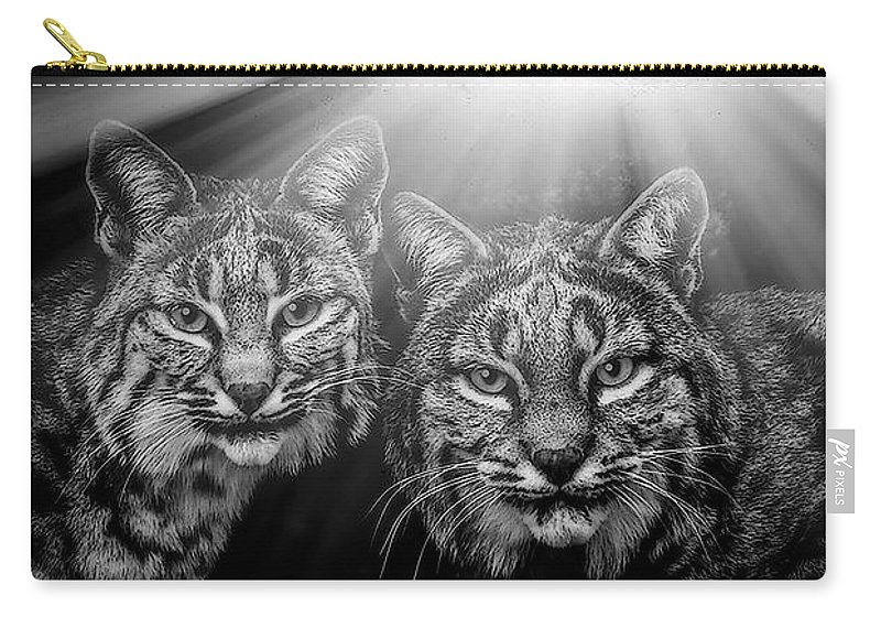 Bobcats Carry-all Pouch featuring the mixed media Bobcats by Elaine Malott