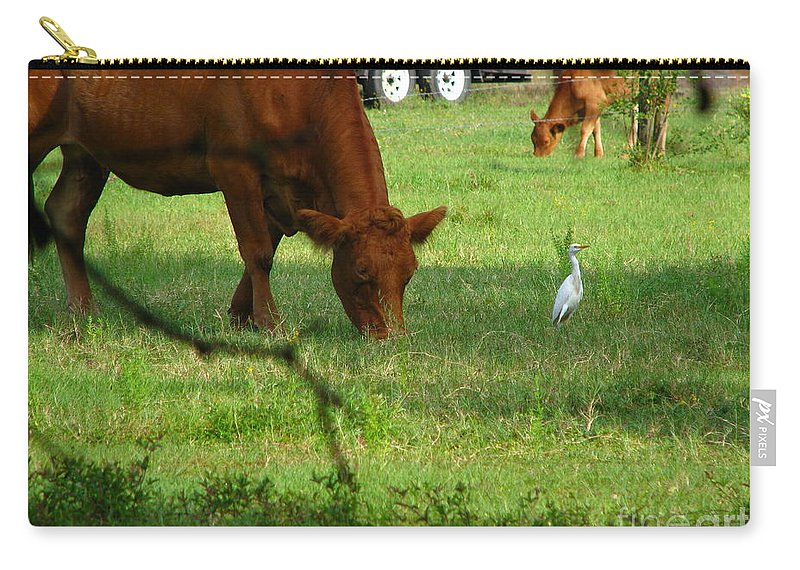 Cows Carry-all Pouch featuring the photograph Bodyguard by Greg Patzer