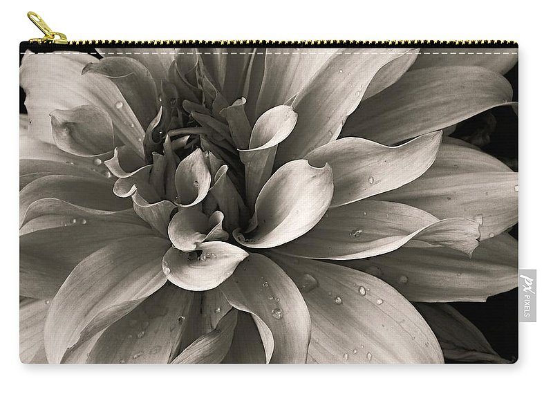 Dahlia Carry-all Pouch featuring the photograph Bold Bloom by Prairie Pics Photography
