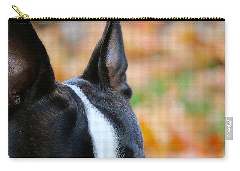 Animal Carry-all Pouch featuring the photograph Bombed by Susan Herber