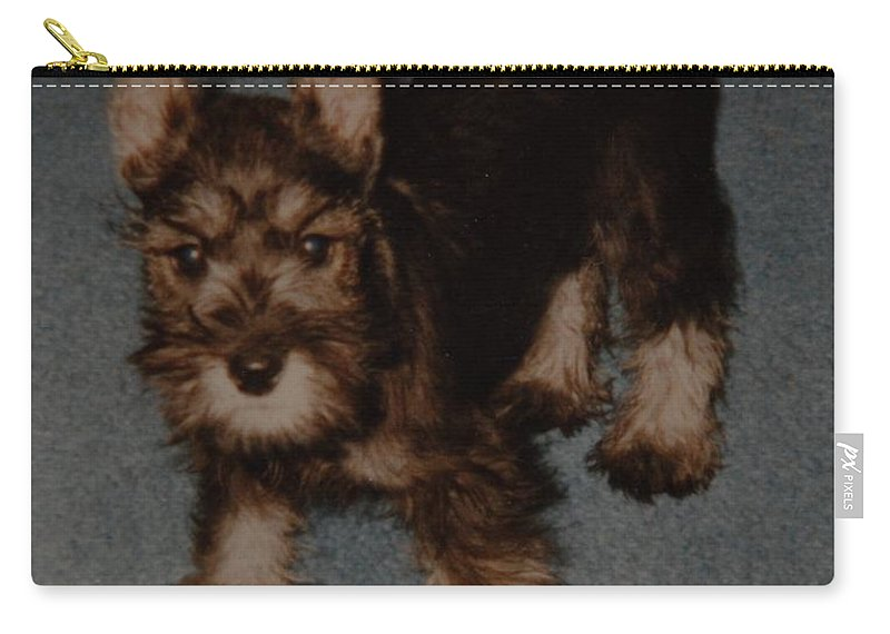 Dog Carry-all Pouch featuring the photograph Boo Boo by Rob Hans
