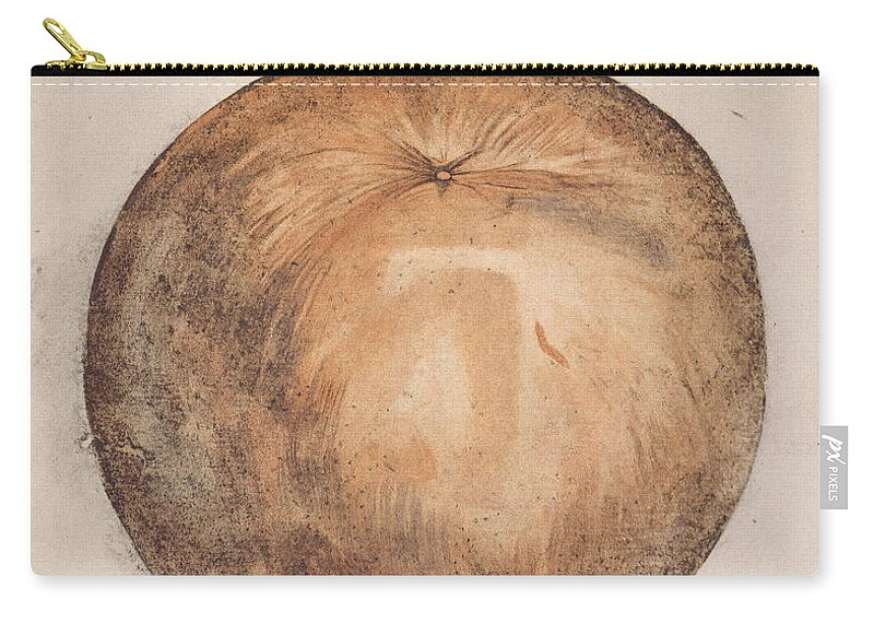 1585 Carry-all Pouch featuring the photograph Botany: Mammee, 1585 by Granger