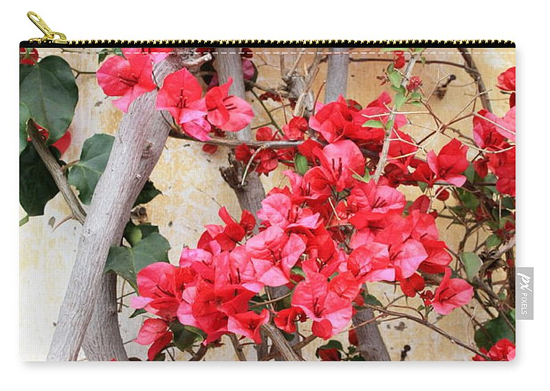 Bougainvilla Carry-all Pouch featuring the photograph Bougainvillea by Carol Groenen