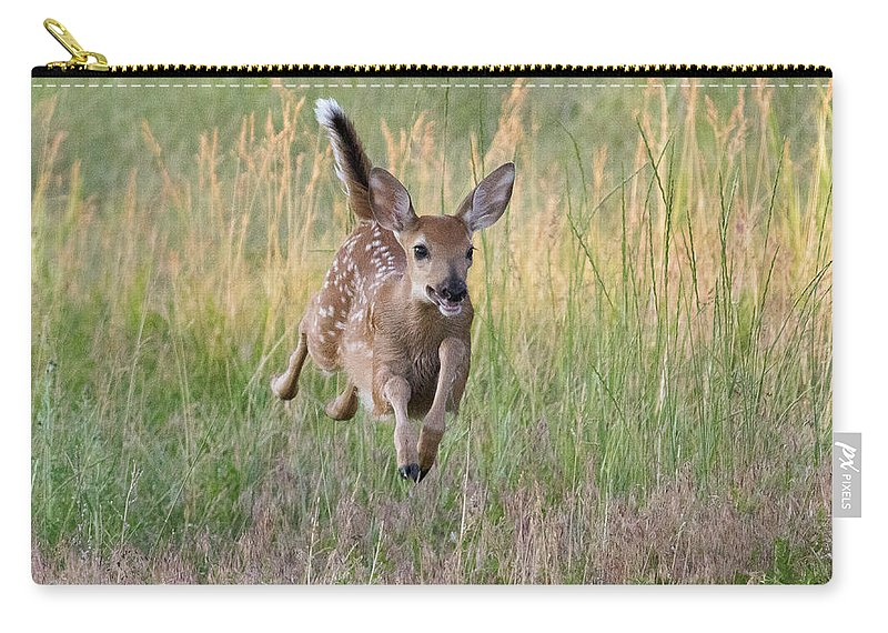 Fawn Carry-all Pouch featuring the photograph Bounding Bambi by Tony Hake