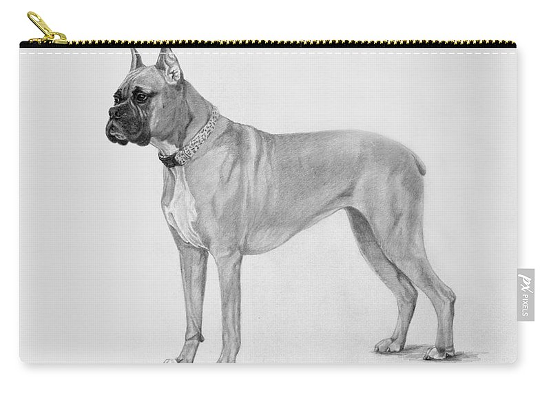 Dog Carry-all Pouch featuring the drawing Boxer At Attention by Phyllis Tarlow
