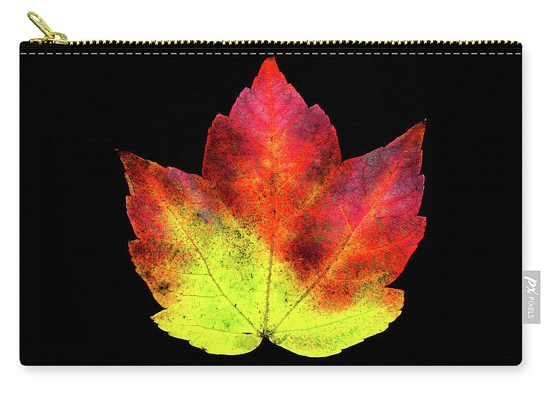 Flowers Carry-all Pouch featuring the photograph Bp14 by Krisjan Krafchak