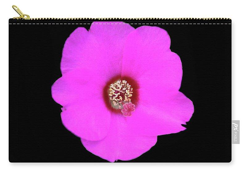 Flowers Carry-all Pouch featuring the photograph bp8 by Krisjan Krafchak