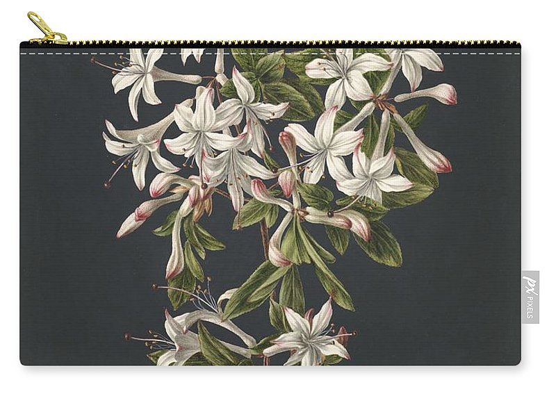 Flower Carry-all Pouch featuring the painting Branch Of A Flowering Azalea, M. De Gijselaar, 1831 by M de Gijselaar