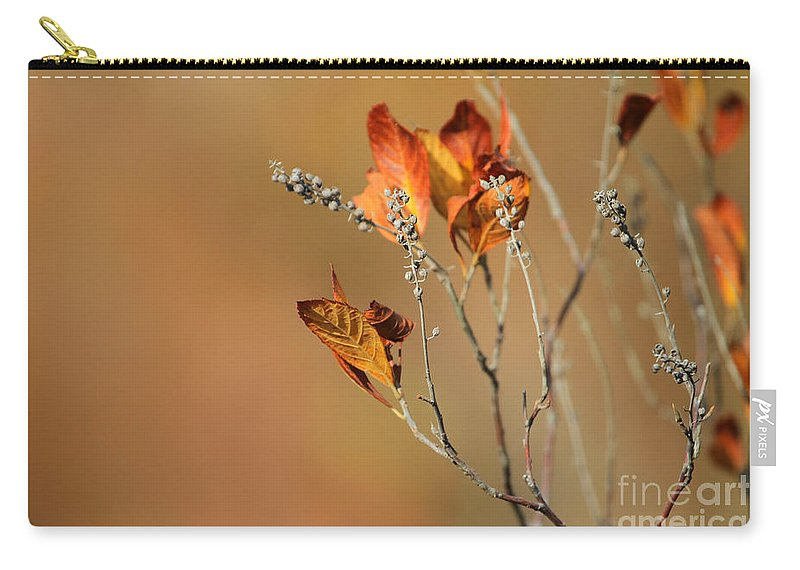 Autumn Carry-all Pouch featuring the photograph Branch Of Autumn by Karol Livote