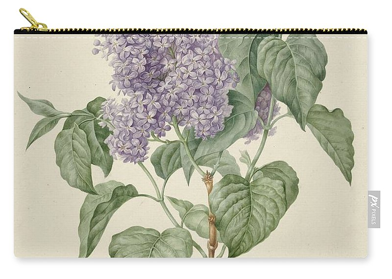 Background Carry-all Pouch featuring the painting Branch With Purple Lilacs, Maria Geertruyd Barbiers-snabilie, 1786 - 1838 by Maria Geertruyd Barbiers