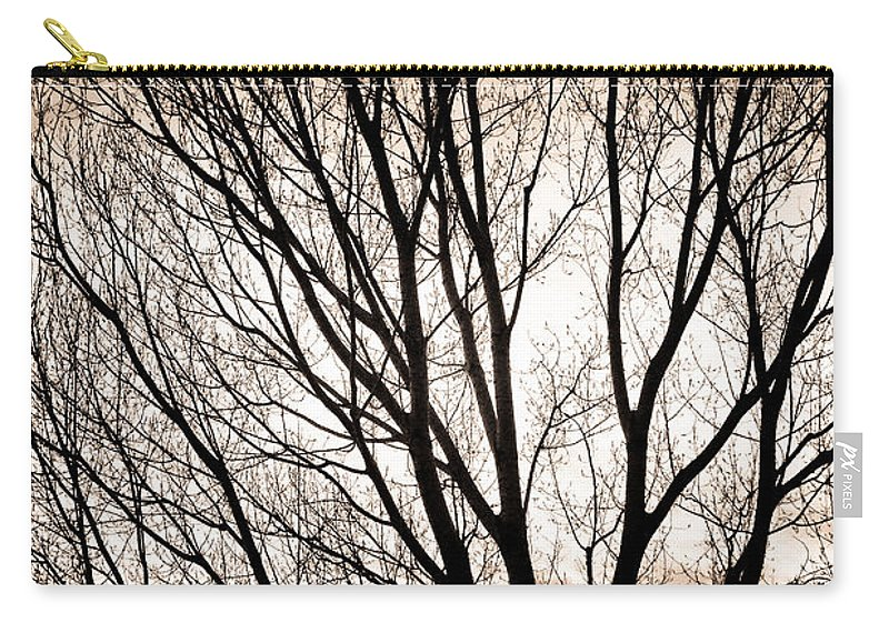 Longmont Carry-all Pouch featuring the photograph Branches Silhouettes Mono Tone by James BO Insogna