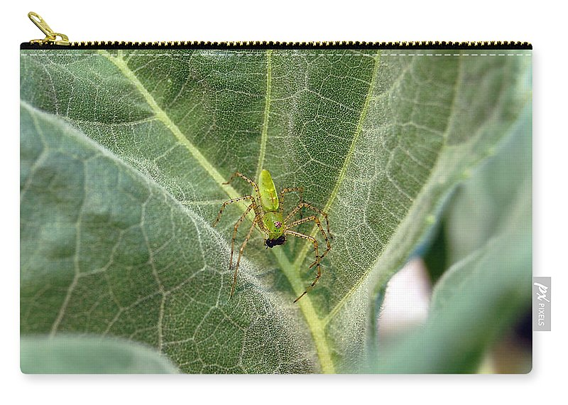 Spider Carry-all Pouch featuring the photograph Breakfast by Robert Meanor