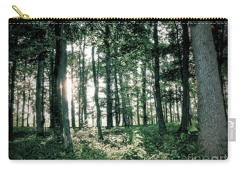 Forest Carry-all Pouch featuring the photograph Breaking Through by Todd A Blanchard