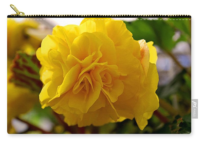Begonia Carry-all Pouch featuring the photograph Breathtaking Begonia by Michiale Schneider