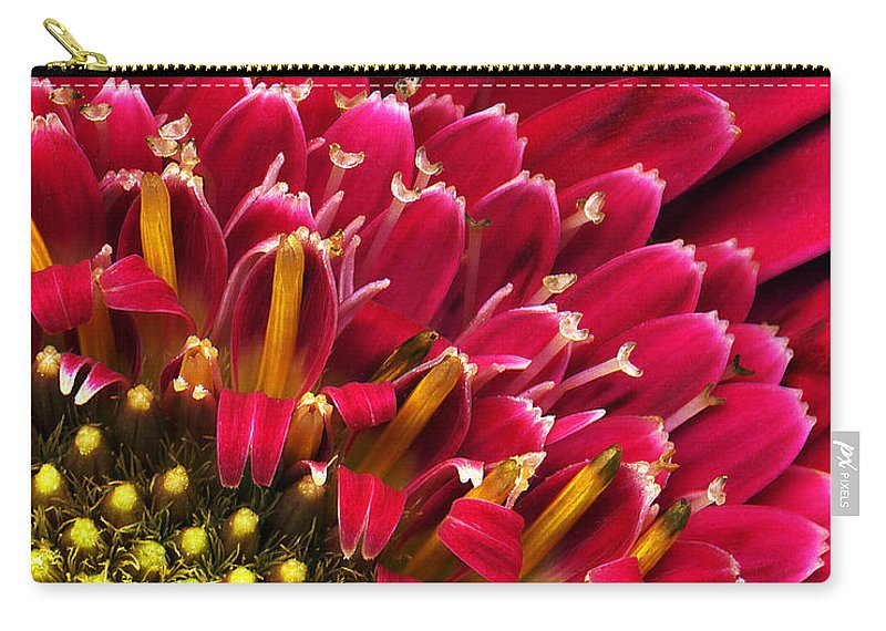Flower Carry-all Pouch featuring the photograph Bright Red Gerbera Daisy by Marilyn Hunt
