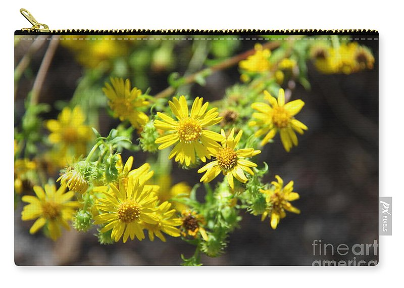 Yellow Flowers Carry-all Pouch featuring the photograph Brighter Than Sunshine by Barbara Bowen