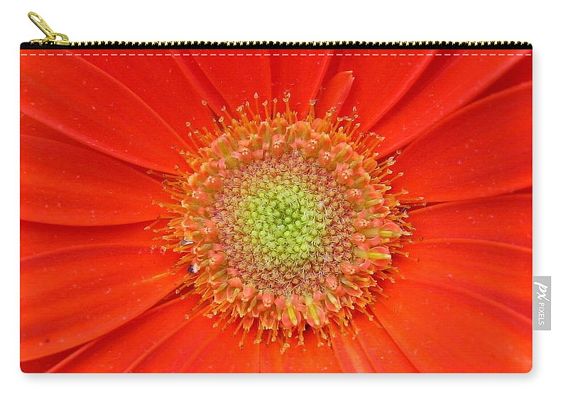Gerbera Carry-all Pouch featuring the photograph Brighteyes by Marla McFall
