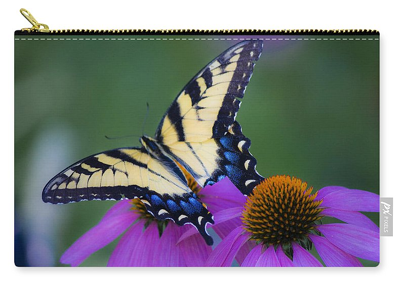 Photographs Carry-all Pouch featuring the photograph Brilliant And Broke by Teresa Mucha