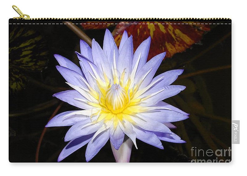 Lily Carry-all Pouch featuring the photograph Brilliant Beauty by David Lee Thompson