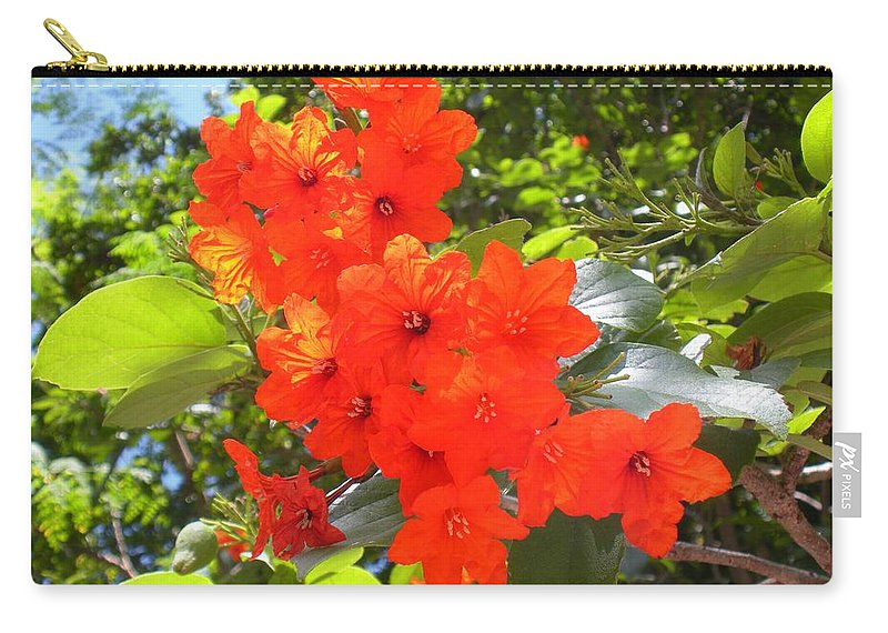 Flowers Carry-all Pouch featuring the photograph Brilliant Blossoms by Maria Bonnier-Perez