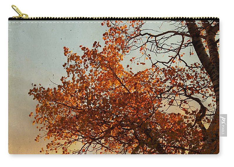 Fall Colors Carry-all Pouch featuring the photograph Brisk Breath by The Artist Project