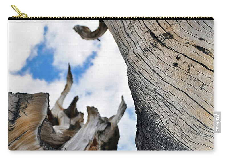Great Basin National Park Carry-all Pouch featuring the photograph Bristlecone Great Basin Portrait by Kyle Hanson