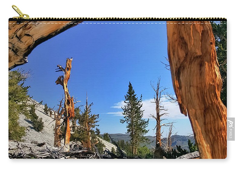 Bristlecone Pine Carry-all Pouch featuring the photograph Bristlecone Pine Forest by Albert Seger