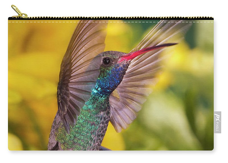 Hummingbird Carry-all Pouch featuring the photograph Broad-bill Pose by Janet Fikar