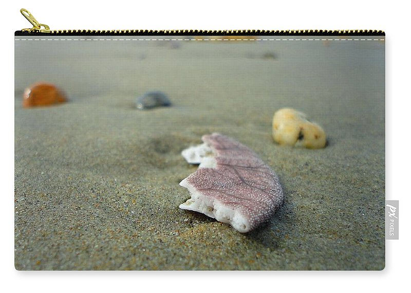 Seashell Carry-all Pouch featuring the photograph Broken Sand Dollar - Low Tide At Manhattan Beach by Trinket's Legacy