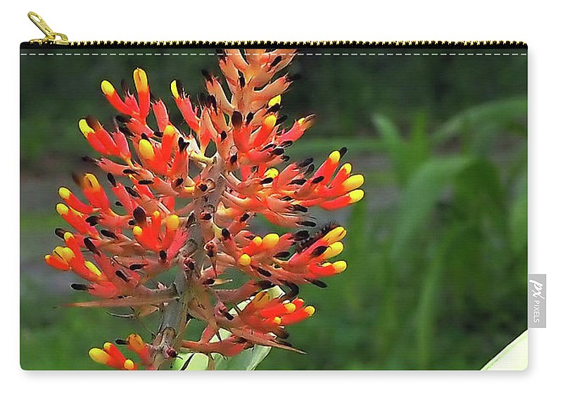 Bromeliad Carry-all Pouch featuring the photograph Bromeliad by Farol Tomson