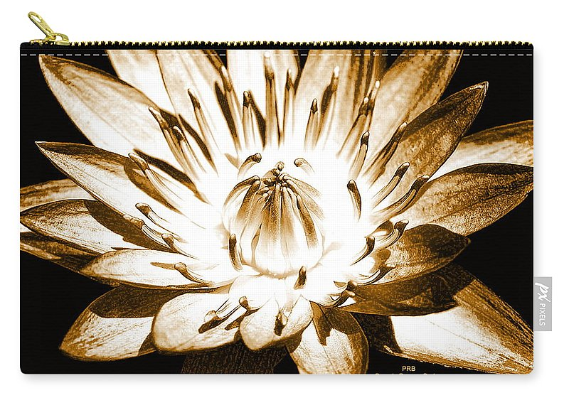 Flower Carry-all Pouch featuring the mixed media Brown Beauty by Pamula Reeves-Barker