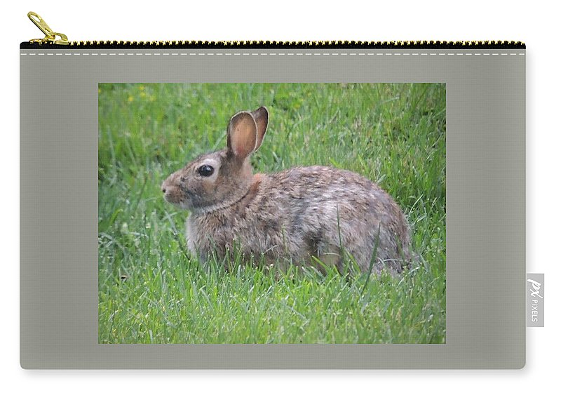 Bunny Carry-all Pouch featuring the photograph Brown Bunny In Grass by Cindy Freeman
