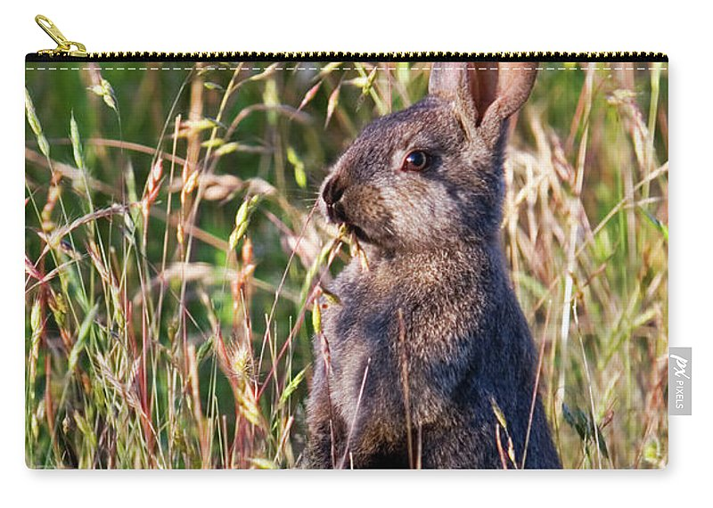 Rabbit Carry-all Pouch featuring the photograph Brown Bunny by Randall Ingalls