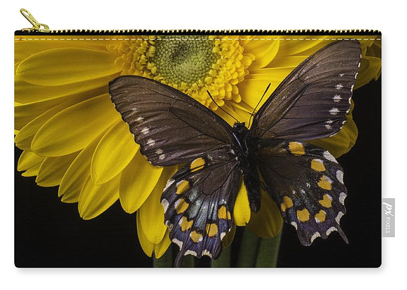 Vertical Carry-all Pouch featuring the photograph Brown Butterfly On Yellow Daisies by Garry Gay