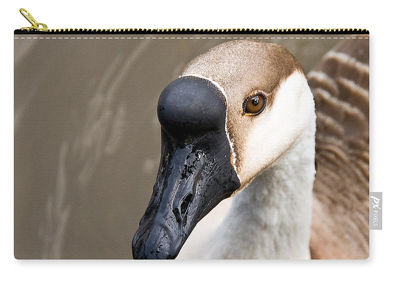 Chinese Brown Goose Carry-all Pouch featuring the photograph Brown Eye by Christopher Holmes
