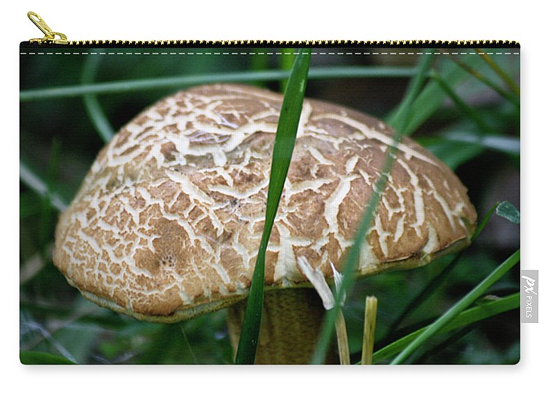 Fungus Carry-all Pouch featuring the photograph Brown Mushroom Squared by Teresa Mucha