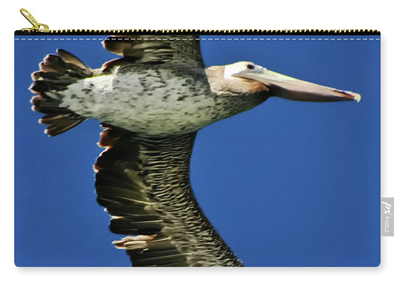 Brown Pelican Carry-all Pouch featuring the photograph Brown Pelican by Albert Seger