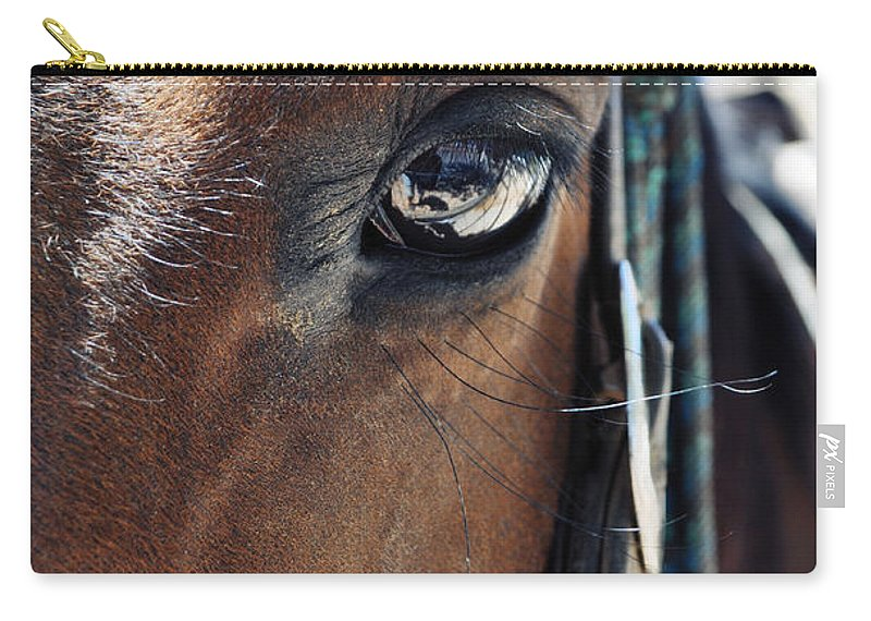Bryce Canyon National Park Carry-all Pouch featuring the photograph Bryce Canyon Horse Eye by Kyle Hanson