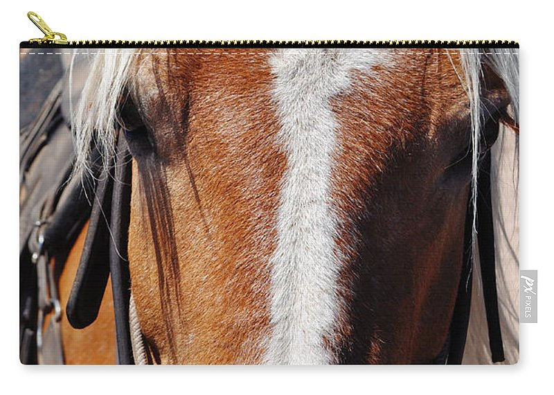 Bryce Canyon National Park Carry-all Pouch featuring the photograph Bryce Canyon Horseback Ride by Kyle Hanson