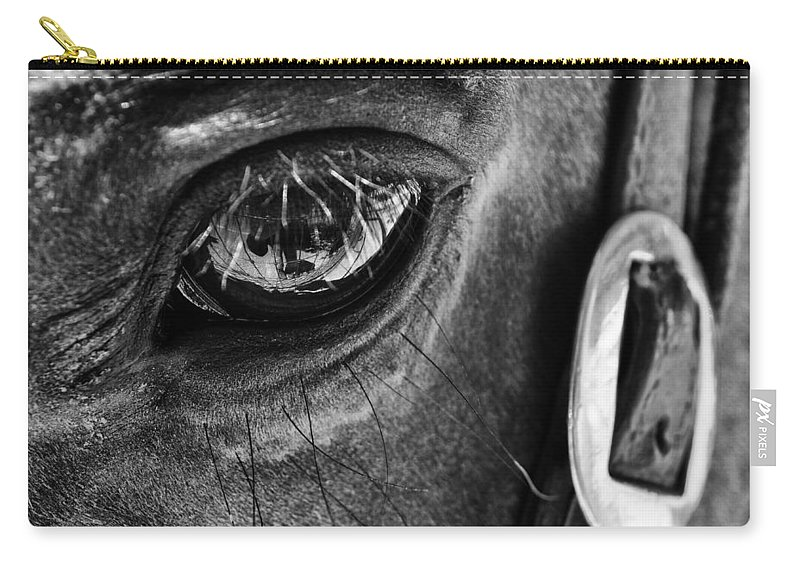 Bryce Canyon National Park Carry-all Pouch featuring the photograph Bryce Canyon National Park Horse Bw by Kyle Hanson