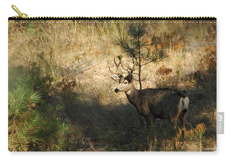 Deer Carry-all Pouch featuring the photograph Buck by Donna Blackhall